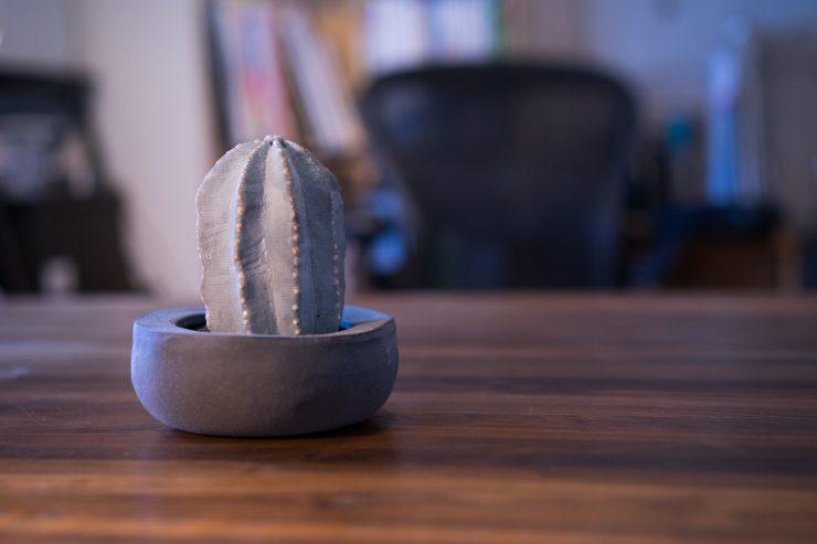 陶製サボテン